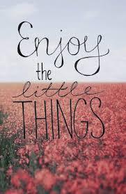 Enjoy The Little Things Sprüche Zitate Sprüche Zitate Und
