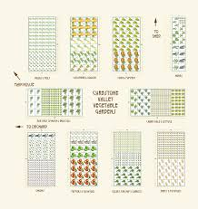 Small Picture Small Garden Layout Plans 5 Small Vegetable Garden Plans Square