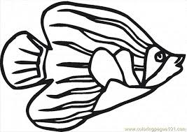 Small Picture Angelfish 7 Coloring Page Free Other Fish Coloring Pages