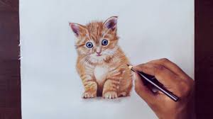 realistic drawings of animals in color. YouTube Premium Inside Realistic Drawings Of Animals In Color