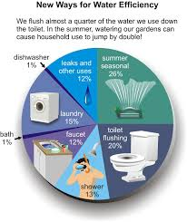 Water Usage Chart For Household Planning Ahead By Vicki Stavropoulos Infographic