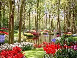 Resultado de imagem para gifs o jardineiro do amor