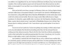 descriptive essay introduction essay examples descriptive writing pdf pay for e2 80 93 save