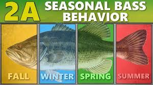 Intermediate Guide To Bass Fishing 2a Seasonal Bass Behavior