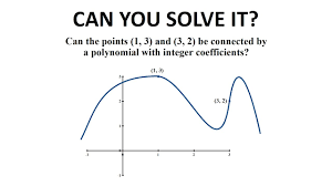 can you solve the integer polynomial puzzle