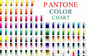 Cmyk Color Chart Fascinating Cmyk Color Chart Vector Pdf Zeenlaco