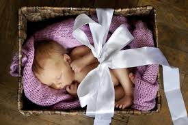 Image result for donor eggs