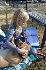 Pet Sitter Cover Letter Letter For Dog Sitter In Pet Sitter Cover Letter Octeams