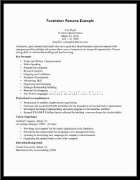 Free Resume Templates Example Format Of Government Sample