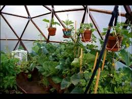 a do it yourself geodome greenhouse