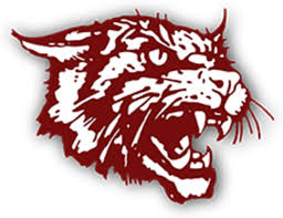 Image result for littlefield wildcats