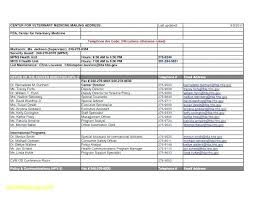 Microsoft Business Plans Templates Ms Office Business Plan Template Inspirational Microsoft Project Of