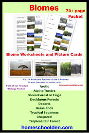 What Are Biomes Learn About The 9 Major Biomes What Are The Major Biomes