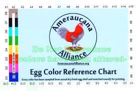 Egg Color Chart Ameraucana Egg Color Reference Charts