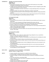Sample Resume For Experienced Sapasis Consultant And