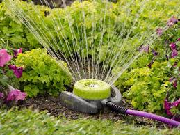 25 ways to conserve water in your