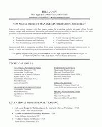 Technical Project Manager Resume Sample Experienced IT Project