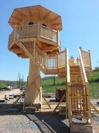 Honey Locust Treehouse   tree house full jpg
