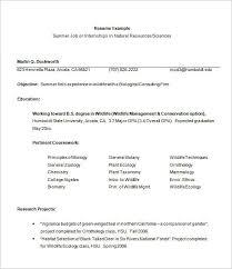 Template For Internship Resume Intern Resume Template Internship