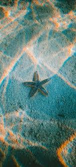 starfish on the ocean aesthetic wallpaper