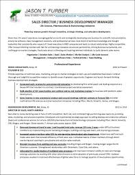 Director Of Development Resumes Business Development Manager Resume Example Distinctive