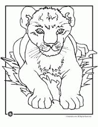 Small Picture Lion Coloring Pages Animal Jr