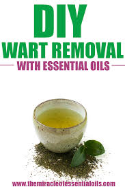essential oils and apple cider vinegar