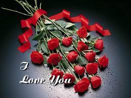 i love you in rose petals