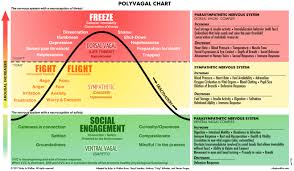 Polyvagal Theory Chart Resources