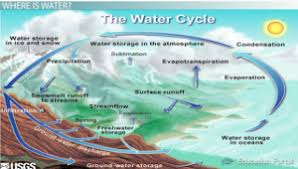 the water cycle precipitation condensation and evaporation  water cycle diagram