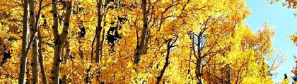 Image result for rocky mountain national park