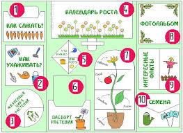 Лэпбук Мой сад для юных огородников Это интересно  lapbook my garden