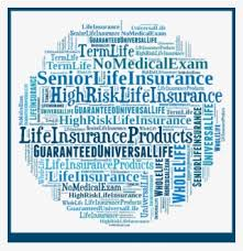 Term Life Insurance Rates Chart Americo Offers A Strong Portfolio Of Medicare Supplements