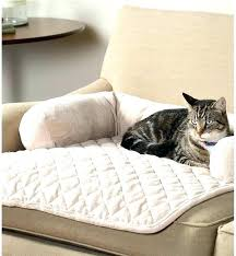sofa pet covers. Brilliant Sofa Pet Proof Chair Covers Cover Cat Furniture With Regard To Modern Regarding  For Sofas Inside Sofa R