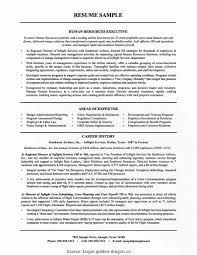 Most Effective Resume Format New Good Hr Executive Cv Sample Resume