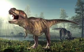 Image result for T rex