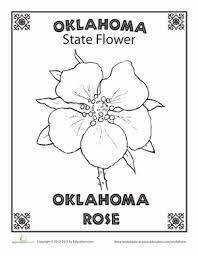 Oklahoma State Flower School Social Studies Rose Coloring