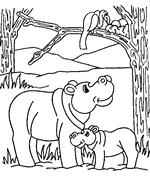 We4you2 Kleurplaten Van Nijlpaard Dieren