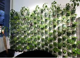 Beautiful vertical wall gardens