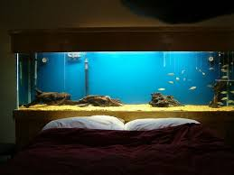 Trend Fish Tank Headboard For Sale 90 In Lamp For Headboard with Fish Tank  Headboard For Sale