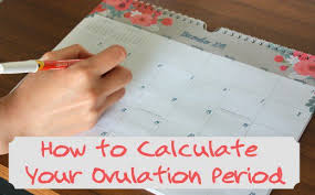 How To Calculate Your Ovulation Period Using Your Menstrual