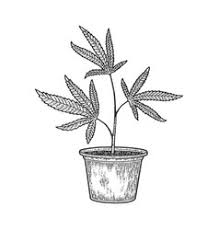 Drawing ideas weed can be used on facebook, tumblr, pinterest, twitter and other we have collect images about weed drawing ideas easy including images, pictures, photos, wallpapers this one was a little more harder and required more sketching, but once i got an idea of how i wanted to create this drawing, it became. Cannabis Tattoo Vector Images Over 160