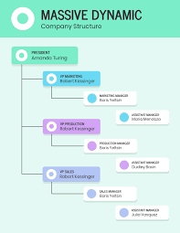 Company Structure Chart Template Company Structure Chart Template
