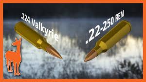 224 Valkyrie Vs 22 250 Remington Is 224 Valkyrie Irrelevant