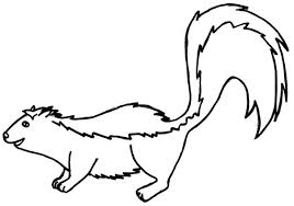 Small Picture Download Skunk Coloring Page Ziho Coloring