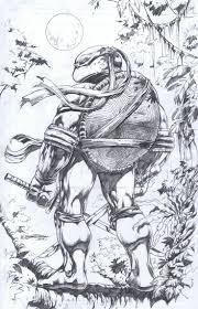 Teenage Mutant Ninja Turtles Leonardo By