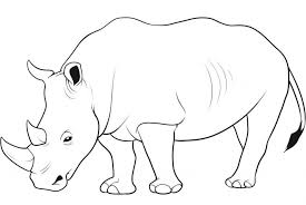 Emerging Wild Animal Coloring Pages Online 26 For Kids With And Animals