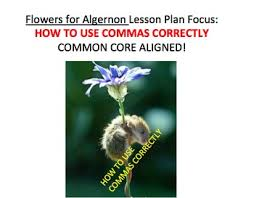 flowers for algernon teaching resources teachers pay teachers  handouts comma rules in writing flowers for algernon lesson plan activities handouts