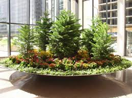 office plant displays. Chicago Interior Plant Rentals And Design | N-P-K Associates, Inc. Office Displays