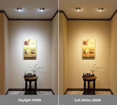 Daylight Vs Soft Light Bulbs 60 Watt Equivalent Led Light Bulbs Glolux Us